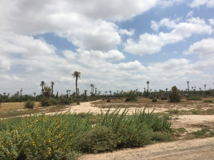achat terrain maroc